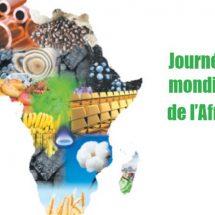 JOURNEE DE L'INDUSTRIALISATION DE L'AFRIQUE : « Made in Mali », promouvoir la production malienne
