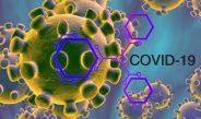 Le Royaume-Uni va collaborer avec l'Union africaine pour ralentir la propagation du coronavirus en Afrique