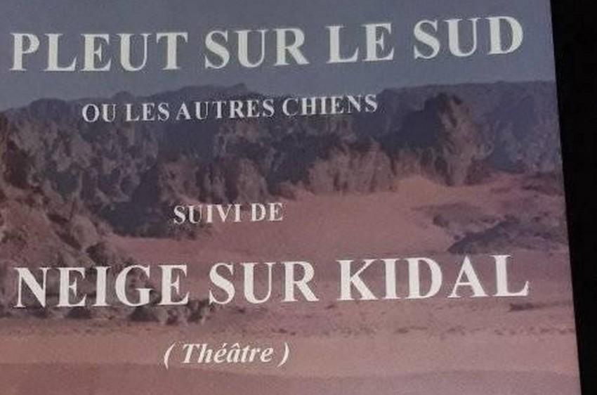 Culture : Il pleut sur le sud ou les autres chiens suivi de Il neige sur Kidal, Sirafily Diango nous replonge dans la crise de 2012 au Mali