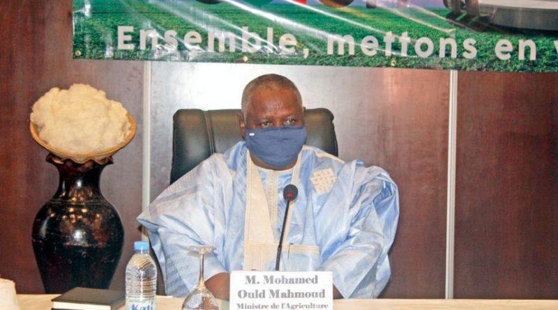 Assises nationales sur le coton : Les engagements de Mohamed Ould Mahmoud pour sortir la filière de la crise cyclique !